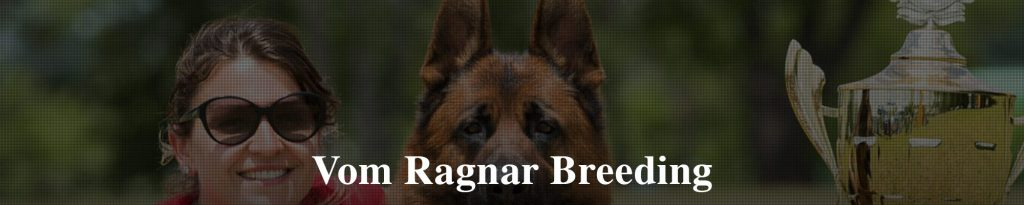 Vom Ragnar Case Study - Full of Leads